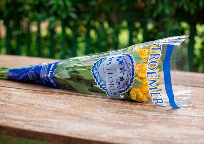 Embalagens cônicas para flores