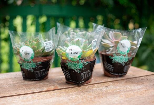Embalagens personalizadas para flores