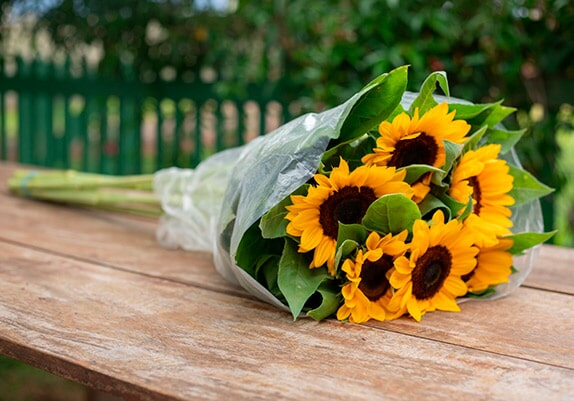 Embalagens plásticas lisas para Flores