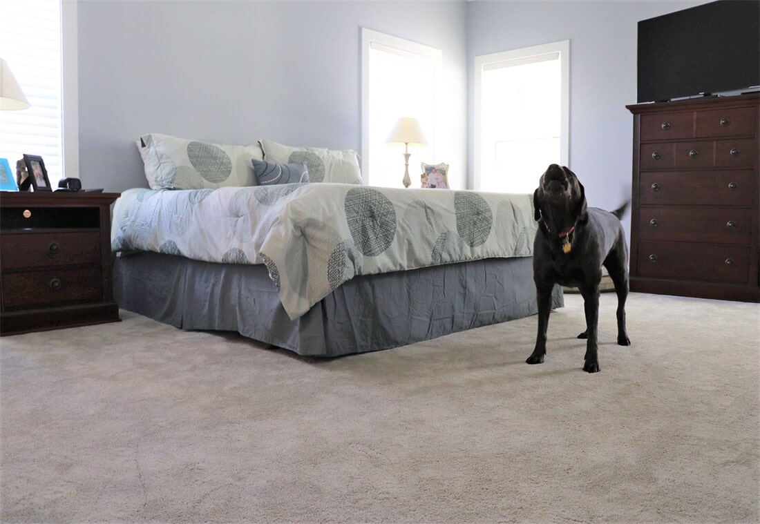 Carpet flooring in Lancaster, PA from Nolt's Floor Covering, Inc.