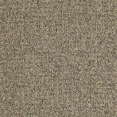 Shaw Flooring in  from ImPressive Floors Inc