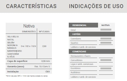 INFO 2 NATIVA (1)