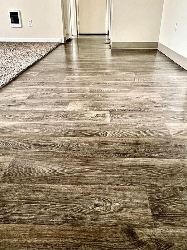 Hardwood & Carpet Transition